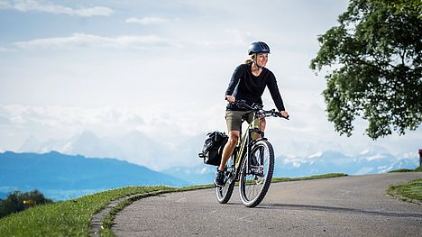 Swiss quality FLYER e-bike