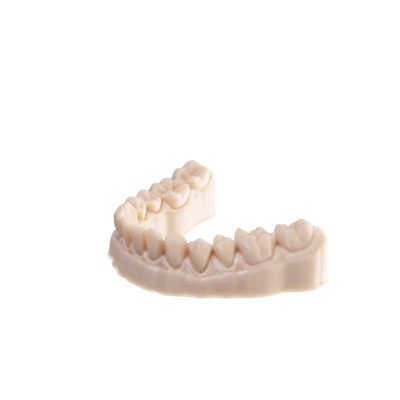 additively manufactured dental model