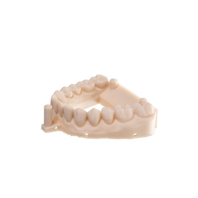 3d printed dental model